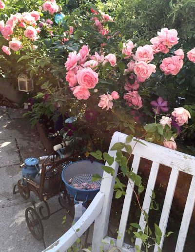 Rosen und Shabby-Chic-Deko im Garten des Ferienhauses